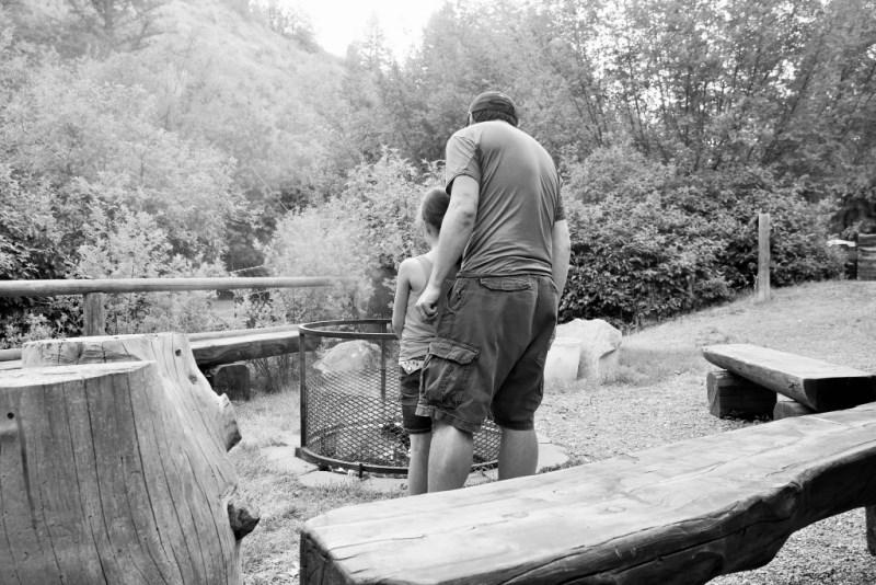 Snake River Falls Hot Dogs